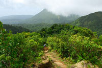 The trail to the boiling lake of Dominica